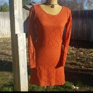Dresses & Skirts - VINTAGE* Long Sleeve Lace Dress